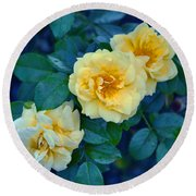 Round Beach Towel featuring the photograph Yellow Roses by Rodney Campbell