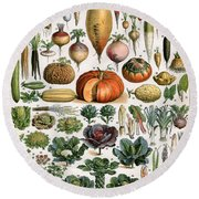 Illustration Of Vegetable Varieties Round Beach Towel by Alillot