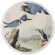 Belted Kingfisher Round Beach Towel by John James Audubon