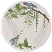 Blue Grey Flycatcher Round Beach Towel by John James Audubon
