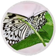 Paper Kite Butterfly No. 1 Round Beach Towel by Sandy Taylor