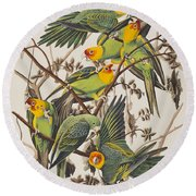 Carolina Parrot Round Beach Towel by John James Audubon