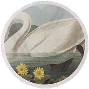 Common American Swan Round Beach Towel by John James Audubon