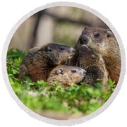 Happy Family Round Beach Towel by Mircea Costina Photography