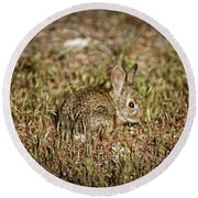 Here I Am Round Beach Towel by Robert Bales