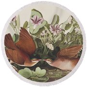 Key West Dove Round Beach Towel by John James Audubon