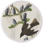 Olive Sided Flycatcher Round Beach Towel by John James Audubon