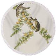 Pine Finch Round Beach Towel by John James Audubon