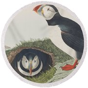 Puffin Round Beach Towel by John James Audubon