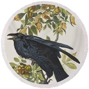 Raven Round Beach Towel by John James Audubon