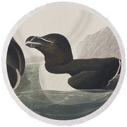 Razor Bill Round Beach Towel by John James Audubon