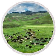 Salt And Pepper Pasture Round Beach Towel by Todd Klassy