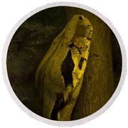 Snake Round Beach Towel by Svetlana Sewell