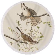 Song Sparrow Round Beach Towel by John James Audubon