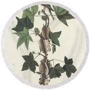 Traill's Flycatcher Round Beach Towel by John James Audubon