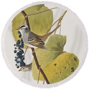 White-crowned Sparrow Round Beach Towel by John James Audubon