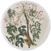 White-eyed Flycatcher Round Beach Towel by John James Audubon