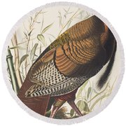 Wild Turkey Round Beach Towel by John James Audubon