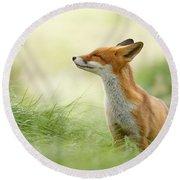 Zen Fox Series - Zen Fox Round Beach Towel by Roeselien Raimond