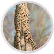 Cheetah Round Beach Towel by David Stribbling