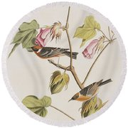 Bay Breasted Warbler Round Beach Towel by John James Audubon