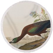 Glossy Ibis Round Beach Towel by John James Audubon