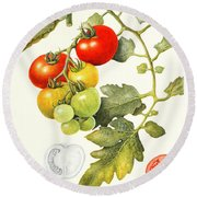 Tomatoes Round Beach Towel by Margaret Ann Eden