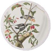 Downy Woodpecker Round Beach Towel by John James Audubon