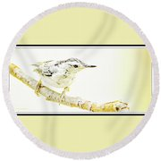 Round Beach Towel featuring the photograph White-breasted Nuthatch, Animal Portrait by A Gurmankin