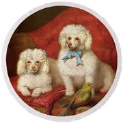 A Pair Of Poodles Round Beach Towel by English School