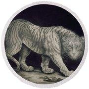 A Prowling Tiger Round Beach Towel by Elizabeth Pringle