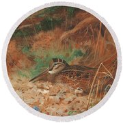 A Woodcock And Chick In Undergrowth Round Beach Towel by Archibald Thorburn