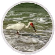 American White Ibis Round Beach Towel by Chrystal Mimbs