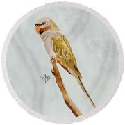 Derbyan Parakeet Round Beach Towel by Angeles M Pomata