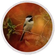 Autumn Day Chickadee Bird Art Round Beach Towel by Jai Johnson