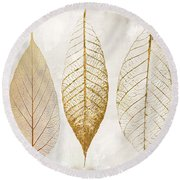 Autumn Leaves IIi Fallen Gold Round Beach Towel by Mindy Sommers