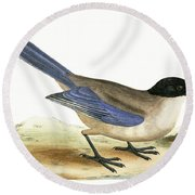 Azure Winged Magpie Round Beach Towel by English School