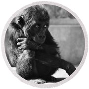 Baby Gorilla Round Beach Towel by Ylla
