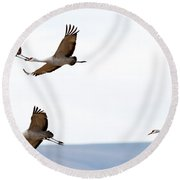 Bank Right Round Beach Towel by Mike Dawson