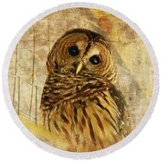 Barred Owl Round Beach Towel by Lois Bryan