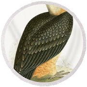 Bearded Vulture Round Beach Towel by English School