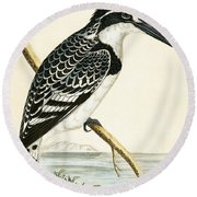 Black And White Kingfisher Round Beach Towel by English School