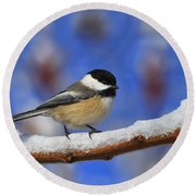 Black-capped Chickadee In Sumac Round Beach Towel by Tony Beck
