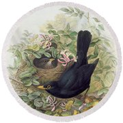 Blackbird,  Round Beach Towel by John Gould