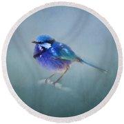 Blue Fairy Wren Round Beach Towel by Michelle Wrighton