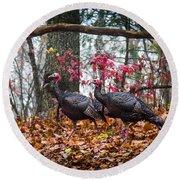 Blue Ridge Turkey Trot Round Beach Towel by Karen Wiles