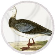 Blue Winged Goose Round Beach Towel by English School