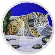 Bobcat Round Beach Towel by Manuel Lopez