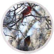 Cardinals In Mossy Tree Round Beach Towel by Carol Groenen