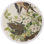 Carolina Turtle Dove Round Beach Towel by John James Audubon